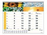 Maandkalender 2020 motief vier seizoenen