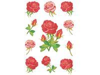 Etiket Herma rozen