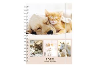 Agenda 2022 My Favorite Friends