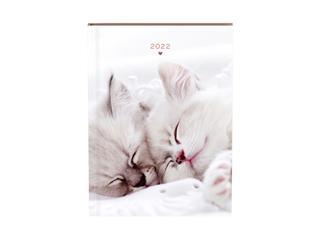 Agenda 2022 katten zacht roze