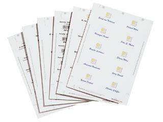Badgekaart Durable 1456 bedrukbaar 60x90mm 160stuks