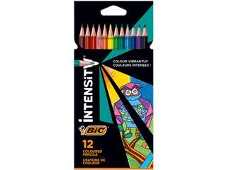 Kleurpotlood Bic Intensity 12 kleuren