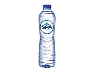Water Spa reine blauw PET 0.50l