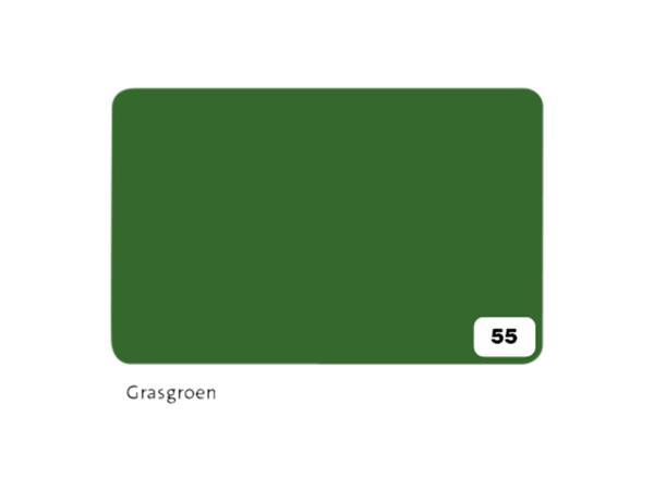 Fotokarton Folia 2zijdig 50x70cm 300gr nr55 grasgroen