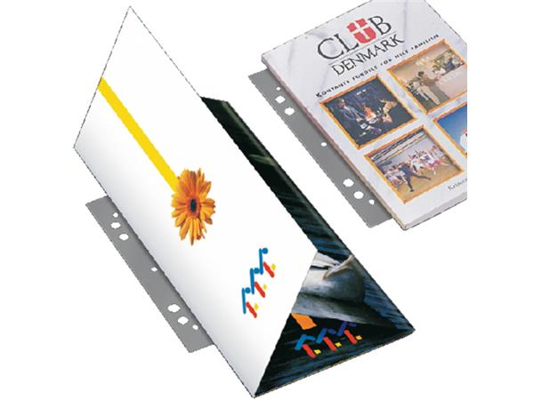 FILESTRIP 3L 8804-100 295MM 2/4RINGS