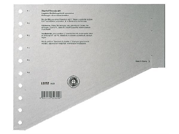 SCHEIDINGSBLADEN LEITZ 1651 KARTON A4 200GR GRIJS