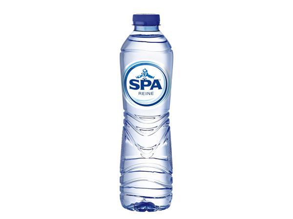 WATER SPA REINE BLAUW 0.5L