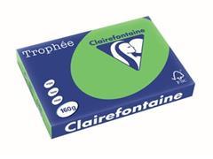 Clairefontaine Trophée Intens A3, 160 g, 250 vel, grasgroen
