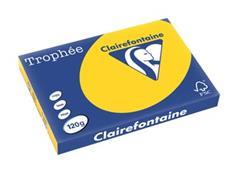 Clairefontaine Trophée Pastel A3, 120 g, 250 vel, goudgeel