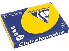 Clairefontaine Trophée Pastel A3, 160 g, 250 vel, goudgeel