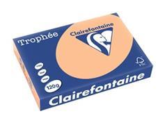 Clairefontaine Trophée Pastel A4, 120 g, 250 vel, abrikoos