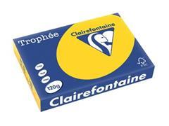 Clairefontaine Trophée Pastel A4, 120 g, 250 vel, goudgeel