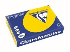Clairefontaine Trophée Pastel A4, 160 g, 250 vel, goudgeel