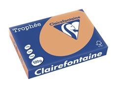 Clairefontaine Trophée Pastel A4, 120 g, 250 vel, mokkabruin