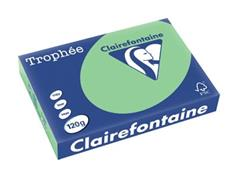 Clairefontaine Trophée Pastel A4, 120 g, 250 vel, natuurgroen