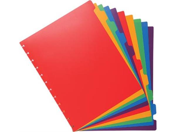 Exacompta uitneembare tabbladen voor showalbum met ringen, in gekleurd PP, 10 tabs