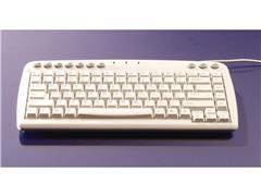 Bakker Elkhuizen Q-board Compact Toetsenbord, Bekabeld, USB, PS/2, QWERTY