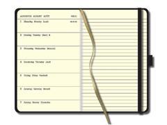 Staples Pocket Agenda, Weekoverzicht, 90 × 140 mm