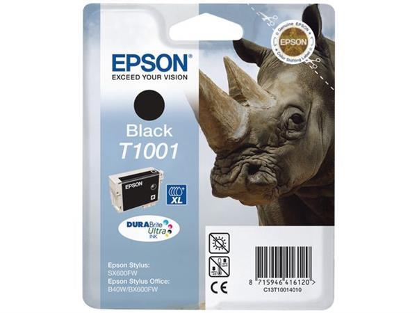 Epson T1001 Toner, single pack, zwart